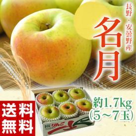 りんご リンゴ 林檎 長野県 安曇野産 名月 1箱 約1.7kg (5~7個入)送料無料