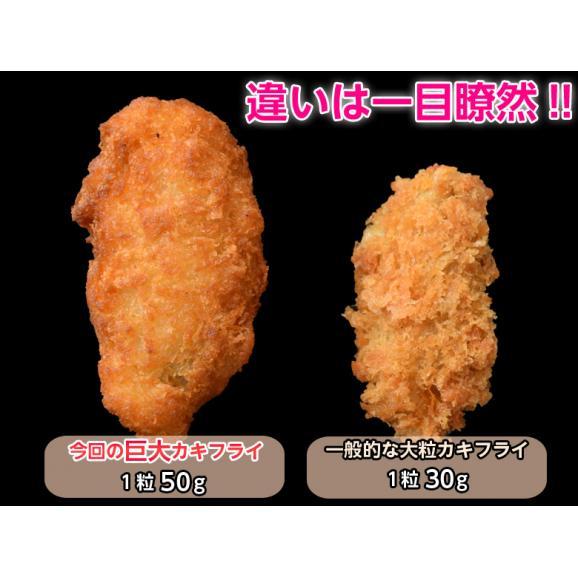 牡蠣 かき カキ「広島産 巨大カキフライ」 50g×10粒 冷凍02