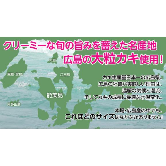 牡蠣 かき カキ「広島産 巨大カキフライ」 50g×10粒 冷凍03
