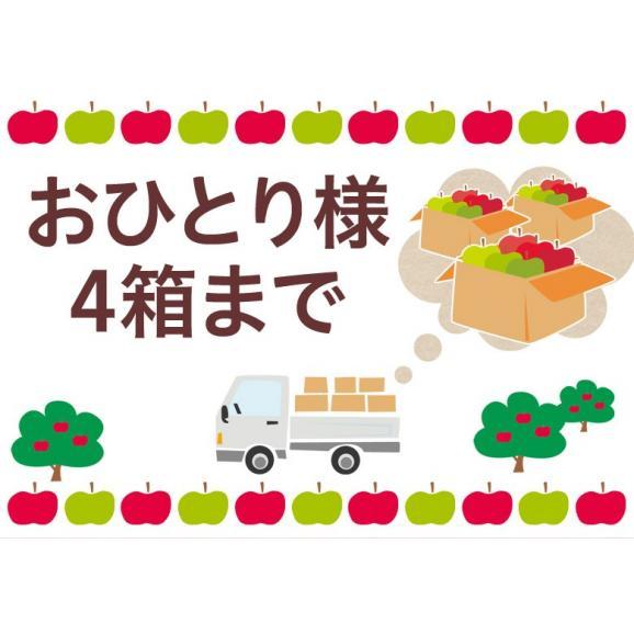 林檎 リンゴ 青森県産 ちょっと訳あり こみつりんご 6~12玉 約2kg 秀A品 ムラ・小さな傷あり 常温 4箱まで同一配送先に送料1口で配送可能02