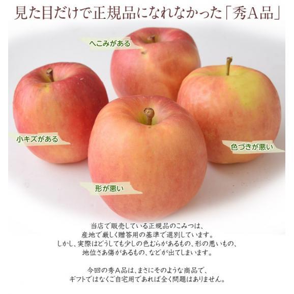 林檎 リンゴ 青森県産 ちょっと訳あり こみつりんご 6~12玉 約2kg 秀A品 ムラ・小さな傷あり 常温 4箱まで同一配送先に送料1口で配送可能04
