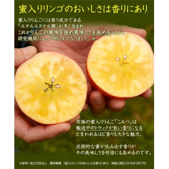 林檎 リンゴ 青森県産 ちょっと訳あり こみつりんご 6~12玉 約2kg 秀A品 ムラ・小さな傷あり 常温 4箱まで同一配送先に送料1口で配送可能06