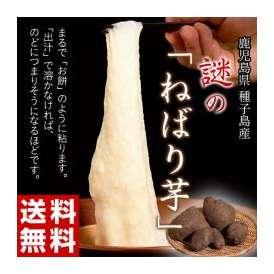 《送料無料》種子島産 「謎のねばり芋」 約2kg ○