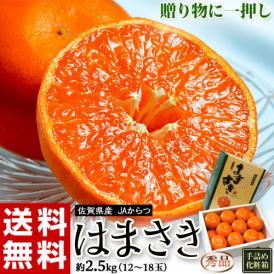 JAからつ『はまさき』佐賀県産 柑橘 秀品 風袋込約2.5kg(12~18玉)化粧箱入 ※常温