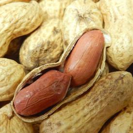 落花生 らっかせい ピーナッツ ナッツ 千葉県八街産 殻付き落花生 100g×2袋 送料無料