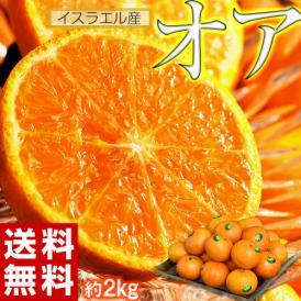 神秘の柑橘 「オア」 甘くて手で皮を剥ける 約2kg 1箱:14~20玉 みかん オレンジ フルーツ 期間限定 高糖度 イスラエル産 送料無料