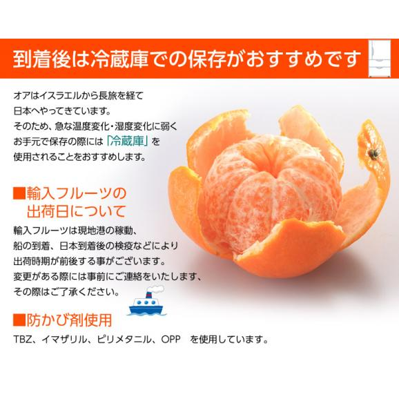 神秘の柑橘 「オア」 甘くて手で皮を剥ける 約2kg 1箱:14~20玉 みかん オレンジ フルーツ 期間限定 高糖度 イスラエル産 送料無料06