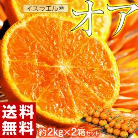 【今だけ500円引き!】神秘の柑橘 「オア」 甘くて手で皮を剥ける 約2kg×2箱 1箱当たり:14~20玉 みかん オレンジ フルーツ 期間限定 高糖度 イスラエル産 送料無料