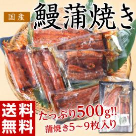 うなぎ ウナギ 鰻 サイズまちまち 国産 鰻蒲焼き 500g(5枚~9枚) タレ・山椒付き ※冷凍 送料無料