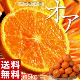 おまけつき! 神秘の柑橘 「オア」約5kg 1箱:30~50玉 みかん オレンジ フルーツ もれなくオア君ハンカチプレゼント イスラエル産 送料無料