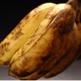 沖縄産 「島バナナ」 1~3房 約1kg