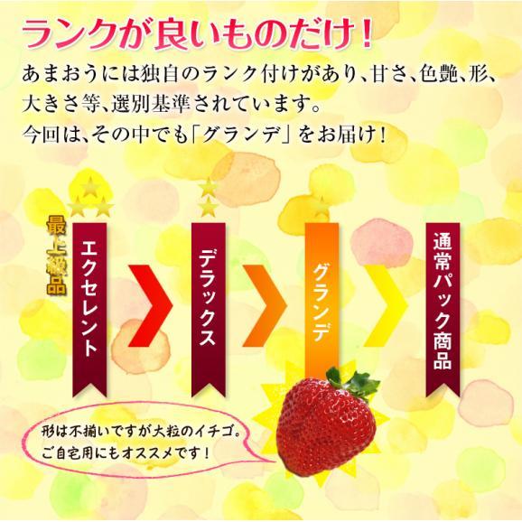 福岡県産 あまおういちご G(グランデ) 約270g×2パック ※冷蔵03