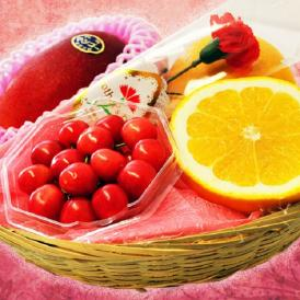 母の日 ギフト 国産 フルーツ カゴ盛り ゴールド 3種4品 ゴールド ※カーネーション(造花)・メッセージカード付き 送料無料