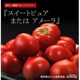 『スイートピュア または アメーラ』 静岡県または長野県産 約800g ○