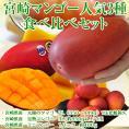 マンゴー好きの方へ贈る!3種食べ比べ特別セット「宮崎マンゴーの夢」(ミニマンゴー1パック・400g、3Lマンゴー1玉・450g以上、太陽のタマゴ1玉・350g)○