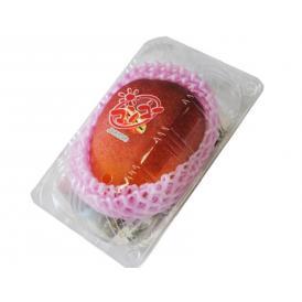 送料無料 JAおきなわ『マンゴー』 沖縄県産マンゴー 1玉 L~2Lサイズ (1玉約310g) 簡易包装 ※常温