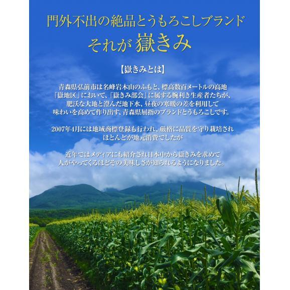 とうもろこし トウモロコシ 青森県産 岩木山嶽高原直送 嶽きみ M~Lサイズ 約3kg(8~12本) ※冷蔵 送料無料02