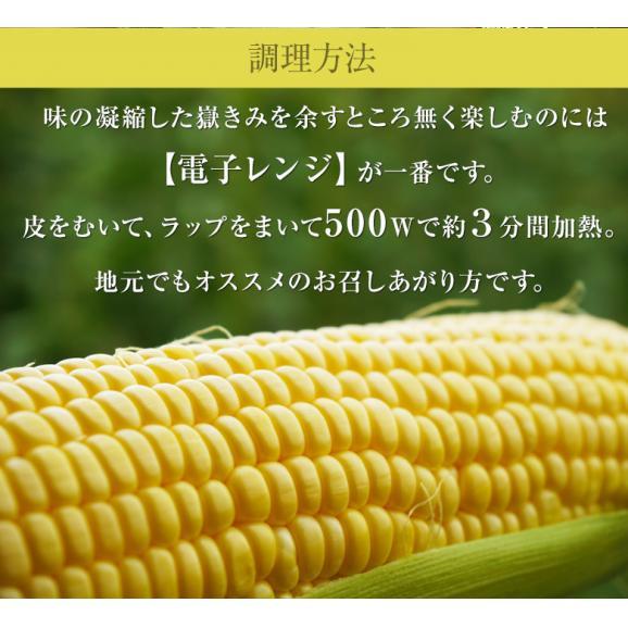 青森県産 『嶽きみ』 M~2Lサイズ 無選別 約3kg(8~13本) ※冷蔵 送料無料06