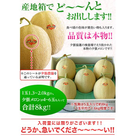 メロン 北海道産 夕張メロン 共選品 優~良品 約8kg (4~6玉) ※常温または冷蔵 送料無料02