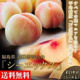 もも 桃 福島県産 高橋忠吉さんの シーエックス 化粧箱入り 約3キロ (5~8玉入) 送料無料 常温