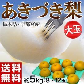 梨 なし ナシ 和梨 栃木・宇都宮産 あきづき 大玉 (8~12玉) 約5kg 送料無料