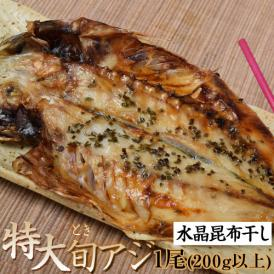 長崎県産 特大 旬アジ(ときあじ) 水晶昆布干し 200g×1尾×1袋 ※冷凍