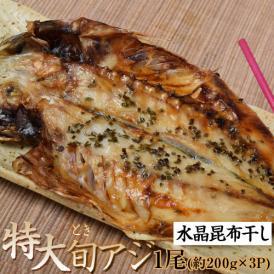 送料無料 長崎県産 特大 旬アジ(ときあじ) 水晶昆布干し 200g×1尾×3袋 ※冷凍