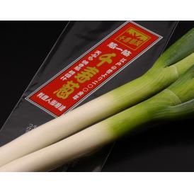 千寿葱と鍋野菜セット(白菜、シイタケ、春菊)