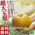 梨 送料無料 栃木県産 にっこり梨 大玉 6~8玉 秀~優品 約5kg
