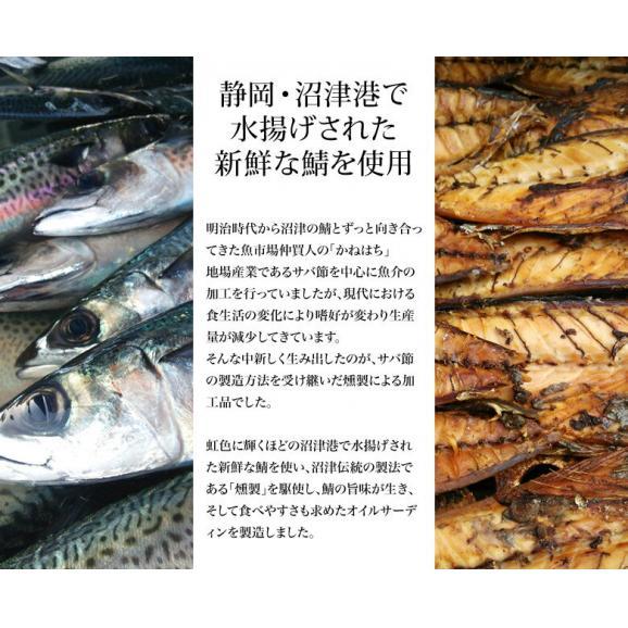 さば 鯖 サバ 駿河燻鯖 オイルサバディン 缶詰 ブラックペッパー 100g×12缶セット 送料無料 常温03