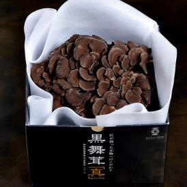 新潟県産 黒舞茸『真』 1株(約700g) 化粧箱 ※冷蔵