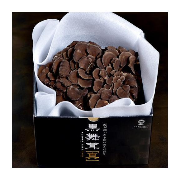 新潟県産 黒舞茸『真』 1株(約700g) 化粧箱