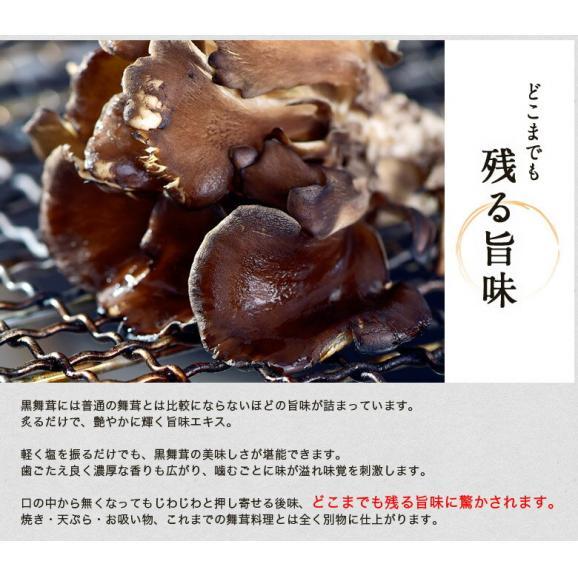 新潟県産 黒舞茸『真』 1株(約700g) 化粧箱 ※冷蔵02