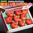 りんご 送料無料 青森県産 「糖度15度サンふじ」 約3kg (7~13玉) 岩木山りんご生産出荷組合