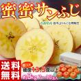 りんご 送料無料 青森県産 蜜蜜サンふじ 約3kg (7~13玉) 糖度13.5度以上 岩木山りんご生産出荷組合
