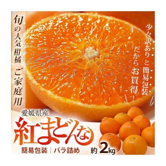 愛媛県産 お試し 紅まどんな バラ詰め 約2kg (目安として8~18玉) M~4Lサイズ ※常温 送料無料01
