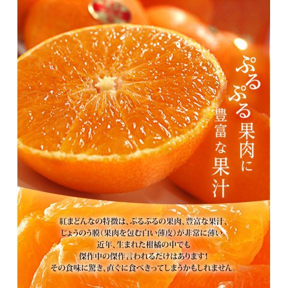 愛媛県産 お試し 紅まどんな バラ詰め 約2kg (目安として8~18玉) M~4Lサイズ ※常温 送料無料03