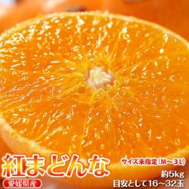 送料無料 愛媛県産 「紅まどんな」 バラ詰め 約5kg  M~3Lサイズ