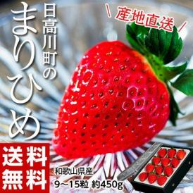 送料無料 いちご 和歌山県産 日高川町の「まりひめ」 約450g 9~15粒入