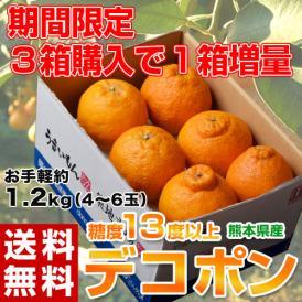 送料無料 熊本県産 デコポン 約1.2kg(4~6玉)【3箱買えば1箱オマケ】