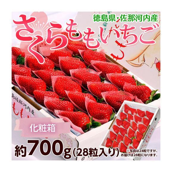 いちご イチゴ 苺 ギフト 徳島県佐那河内産 さくらももいちご 化粧箱 28粒 約700g 送料無料 ※冷蔵 送料無料01