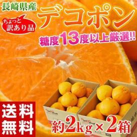 みかん 柑橘 長崎県産 訳あり デコポン 約2kg×2箱 送料無料