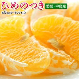 柑橘 みかん ミカン 愛媛県中島産 ひめのつき (傷あり含む) S~3L 約5kg 送料無料