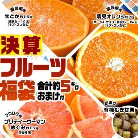柑橘 せとか 清見 グレープフルーツ 決算フルーツ福袋+おまけ(甘栗1袋) 合計約5kg 送料無料 常温