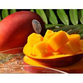 宮崎の完熟マンゴーとしても有名なアーウィン種 アップルマンゴー