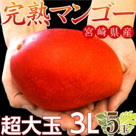 マンゴー 宮崎県産 超大玉 マンゴー 3L ×5玉(1玉:450~509g) 送料無料