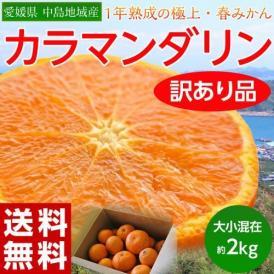 【2箱、3箱購入で増量】愛媛県 中島地域産  訳あり カラマンダリン 大小混在 約2kg 送料無料