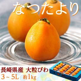 びわ なつたより 長崎県産 秀品 大粒3~5L 12~16玉 約1kg ※冷蔵 送料無料