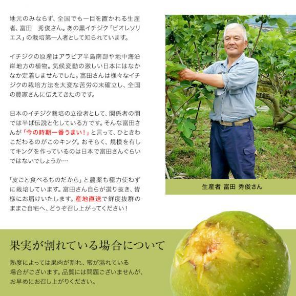富田秀俊さんの青イチジク「キング」約300g(3~6玉)×4パック 佐賀県産 ※冷蔵 送料無料05