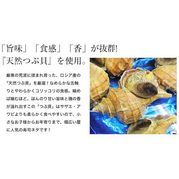 つぶ貝 刺身用 ロシア産 ツブ貝スライス(5g×20枚入り) ×5Pセット 送料無料02